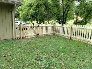 green grass and picket fence with gate near garage