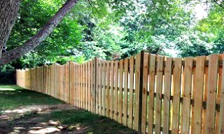 wood fence and trees