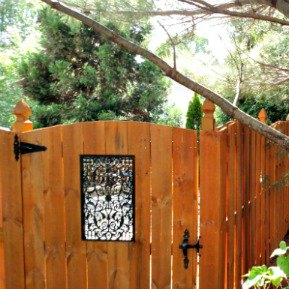 fence with square metal window in gate near a pine tree
